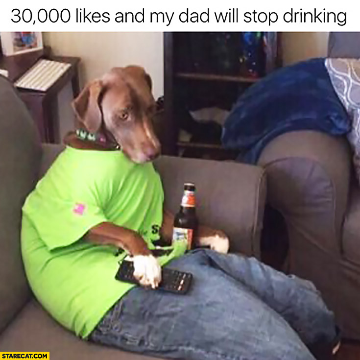 30000 likes and my dad will stop drinking. Dog wearing human clothes