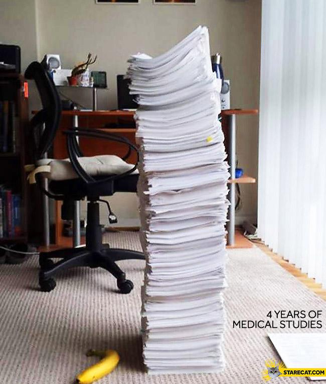 4 years of medical studies