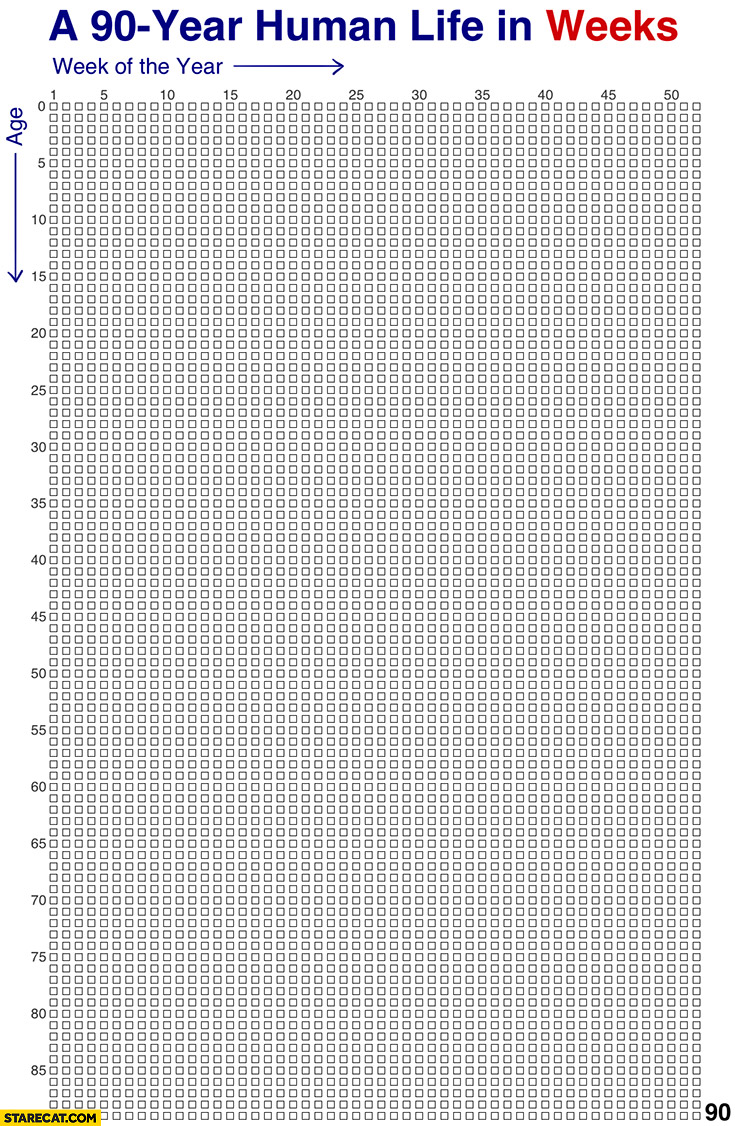 A 90 year human life by weeks in weeks graph boxes
