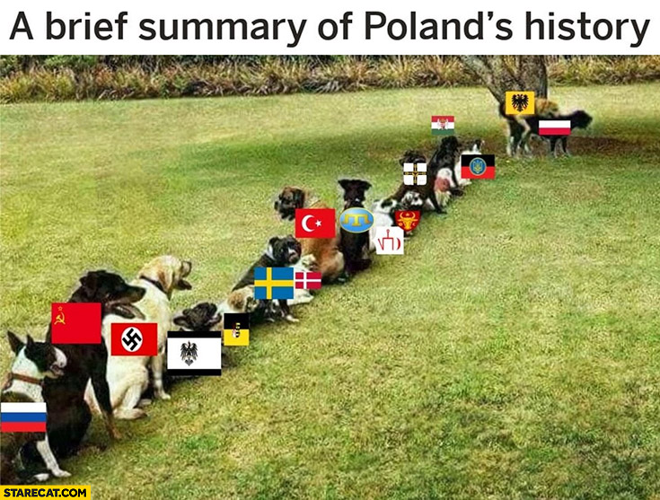 A brief summary of Poland's history queue of dogs