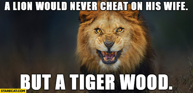 A lion would never cheat on his wife but a Tiger Wood