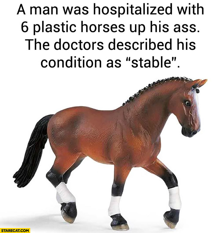 """A man was hospitalized with 6 plastic horses up his ass, the doctor described his condition as """"stable"""""""