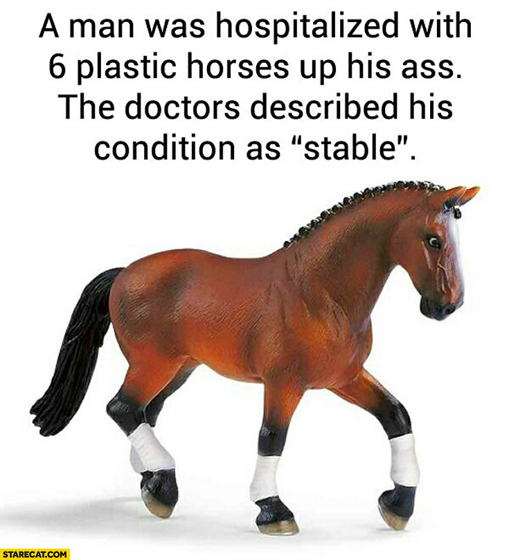 A man was hospitalized with 6 plastic horses up his the doctors described his condition as stable
