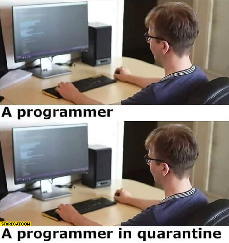 A programmer vs a programmer in quarantine same picture