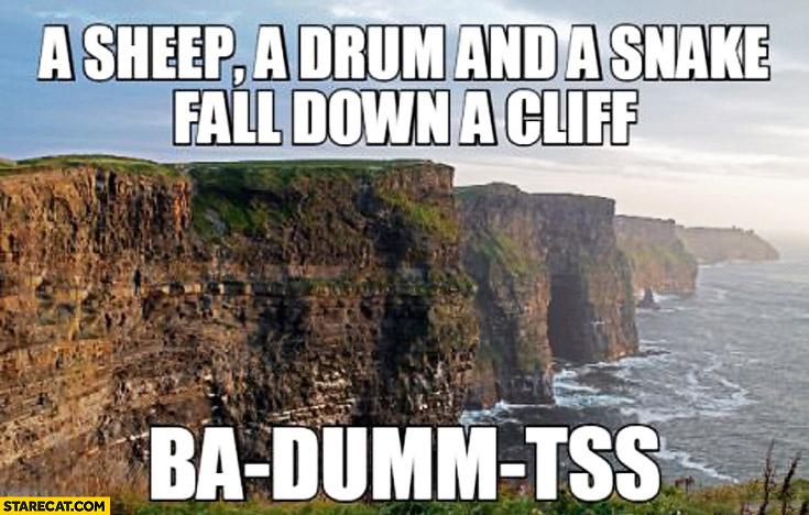 A sheep a drum and a snake fall down a cliff ba-dumm-tss