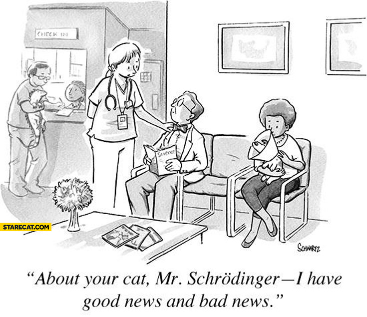 About your cat Mr Schrodinger I have good news and bad news