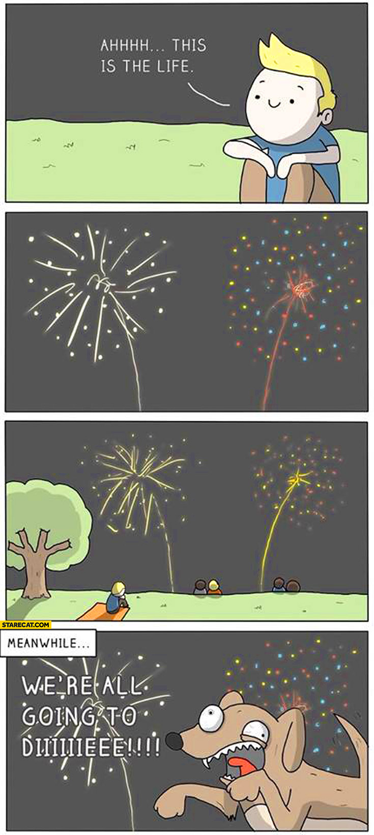 Ah this is life meanwhile we're all going to die fireworks dog