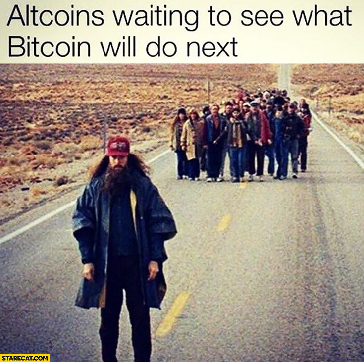 Altcoins waiting to see what Bitcoin will do next