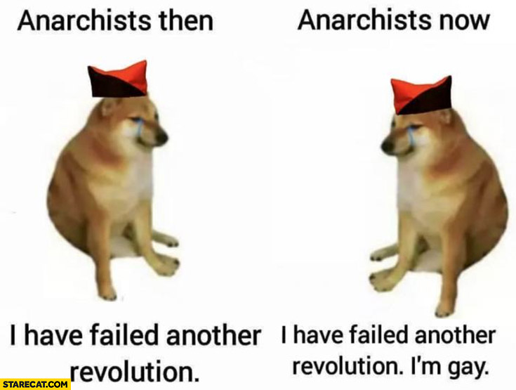 Anarchists then vs now I have failed another revolution dog doge crying