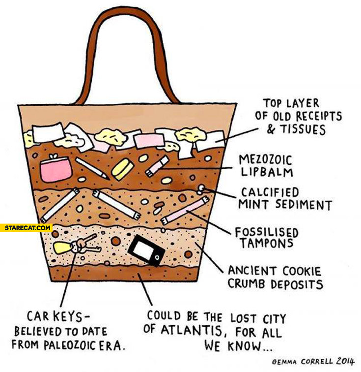 Anatomy of woman's handbag