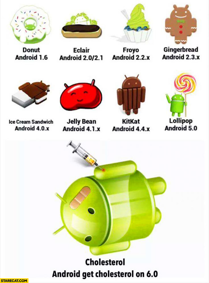 Android version names 6.0 Android Cholesterol