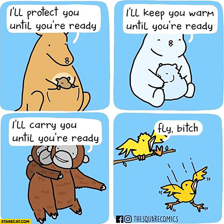 Animals I'll protect you, keep you warm, carry you until you're ready vs birds: fly bitch! Kicking out