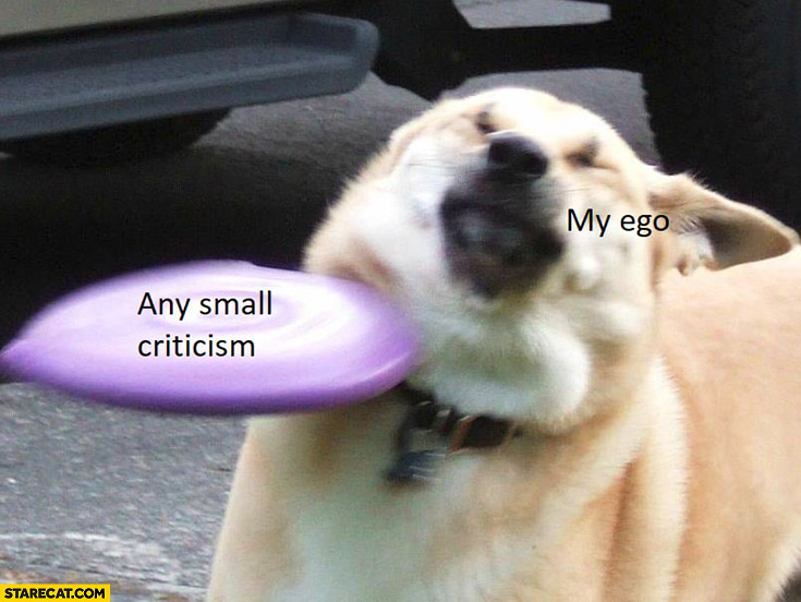 Any small criticism vs my ego dog hit by a frisbee