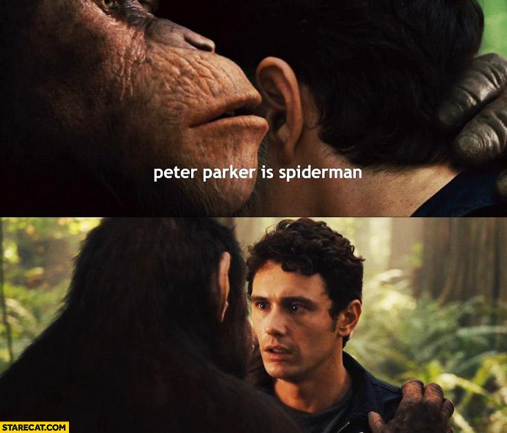 Ape telling a secret Peter Parker is Spiderman