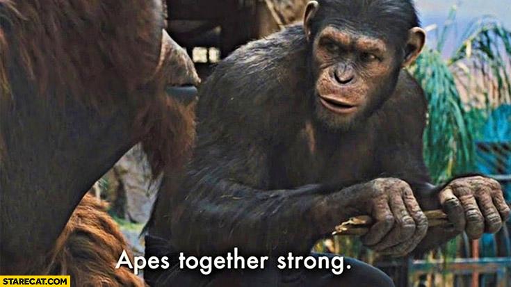 Apes together strong original meme