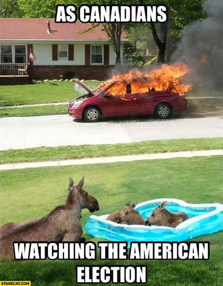 As Canadians watching the American election moose watching car on fire