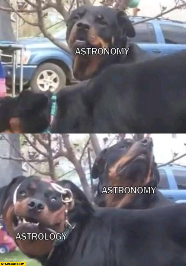 Astronomy normal dog, astrology retarded dog comparison