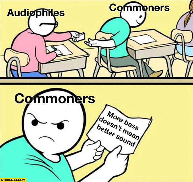 Audiophiles vs commoners more bass doesn't mean better sound