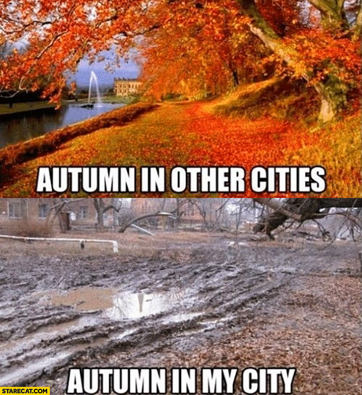 Autumn in other cities beautiful vs autumn in my city awful