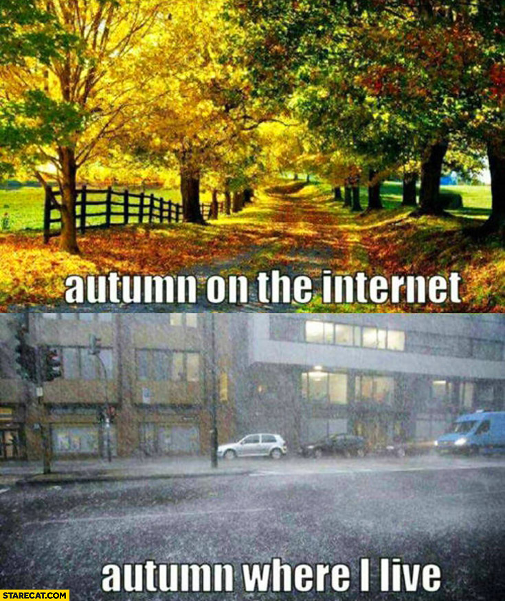 Autumn on the internet, autumn where I live rain