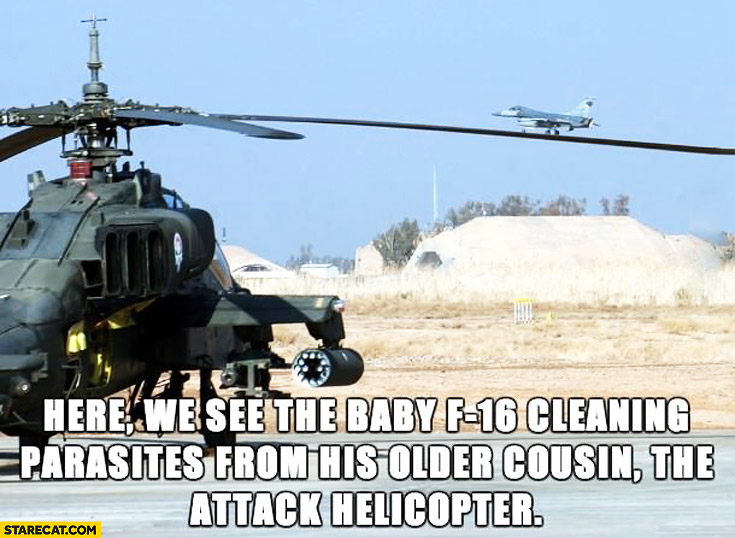 Baby F-16 cleaning parasites from older cousin the attack helicopter