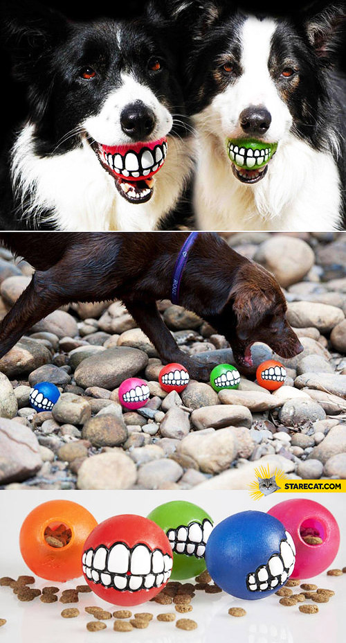 Balls for dogs with teeth