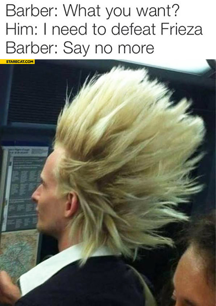Barber what do you want I need to defeat Frieza say no more