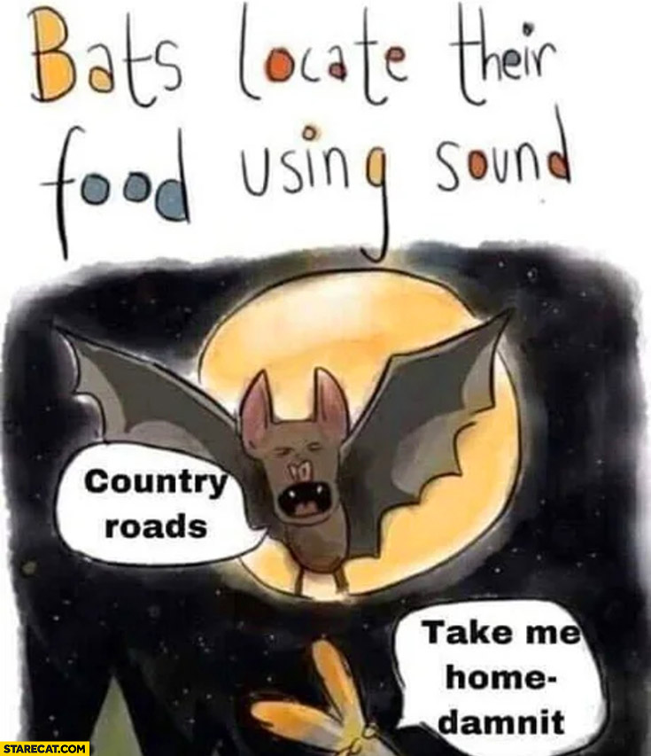Bats locate their food using ultrasound: country roads, take me home damnit