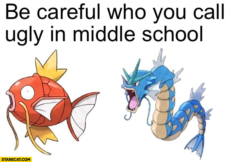 Be careful who you call ugly in middle school Pokemon