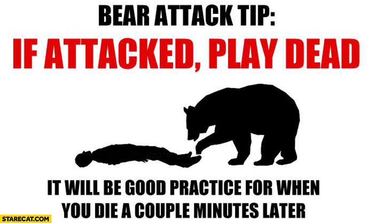 Bear attack tip: if attacked play dead, it will be good practice for when you die a couple minutes later