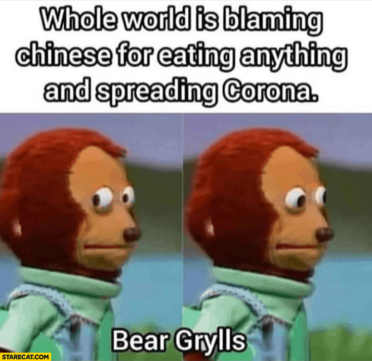 Bear Grylls confused coronavirus meme whole world is blaming Chinese for eating anything and spreading the virus