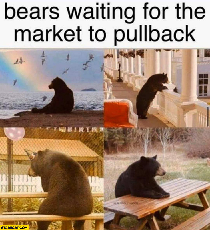 Bears waiting for the stock market to pullback