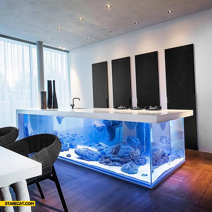 Beautiful kitchen with aquarium