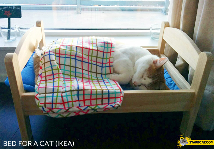 Bed for a cat ikea