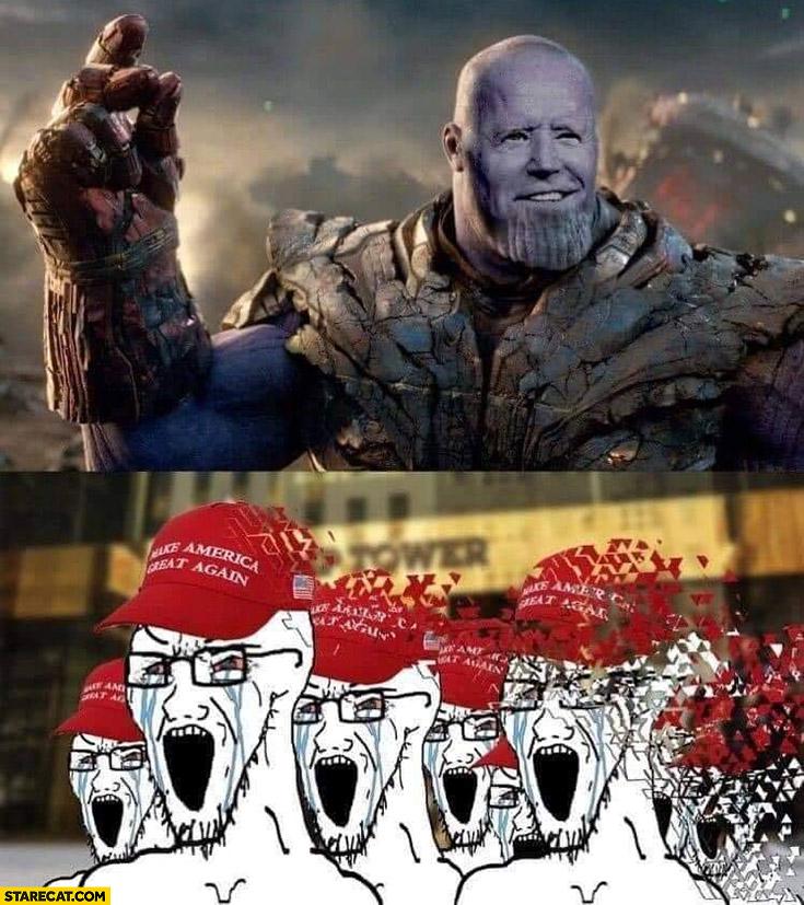 Biden making Trump supporters disappear the avengers meme