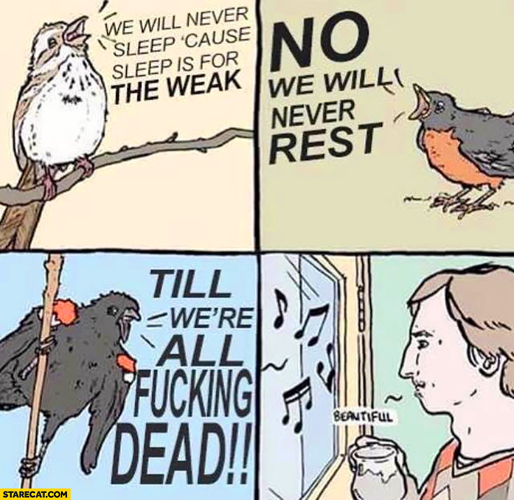 Birds singing: we will never sleep, cause sleep is for the weak, no we will never rest till were all fcking dead beautiful comic