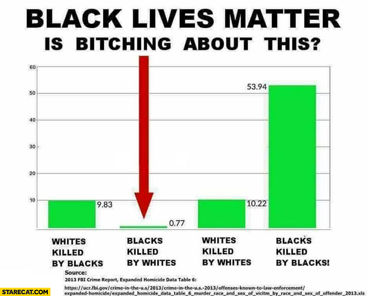 Black lives matter is bitching about this blacks killed by whites graph