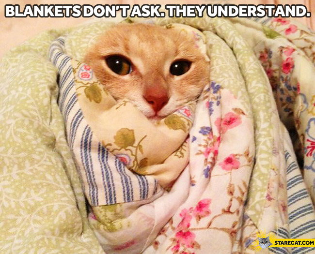 Blankets don't ask questions blankets understand