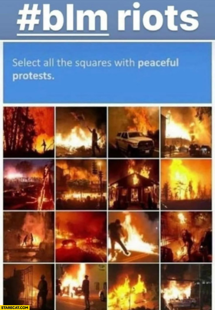 BLM riots captcha select all the squares with peaceful protests black lives matter
