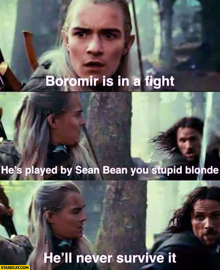 Boromir is in a fight he's played by Sean Bean you stupid blonde he'll never survive it