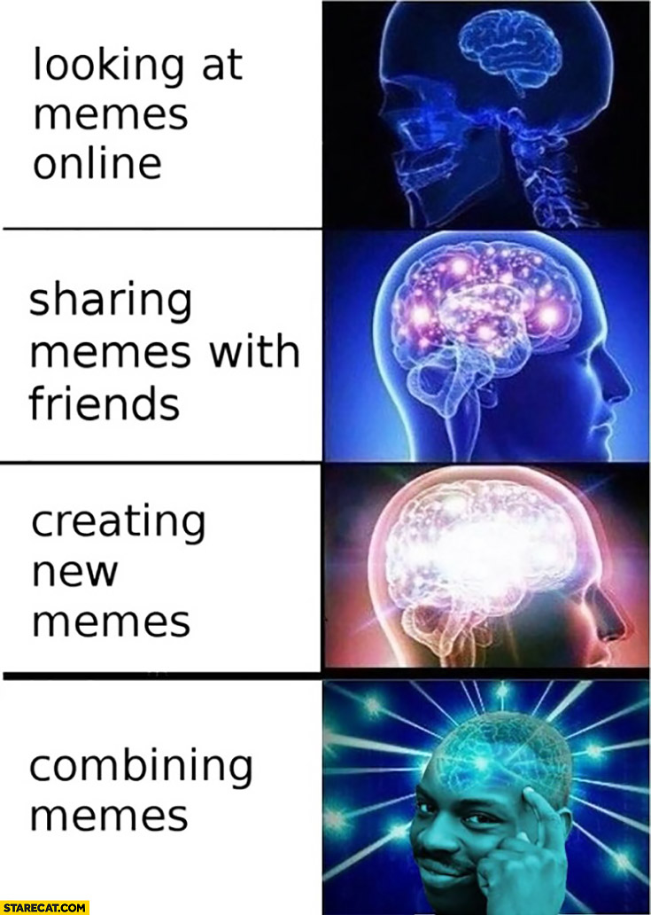 Brain meme: looking at memes online, sharing memes with friends, creating new memes, combining memes