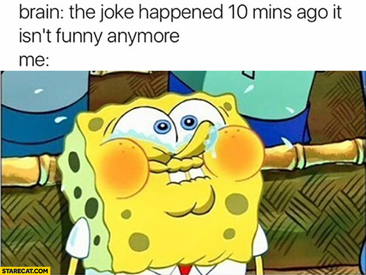 Brain: the joke happened 10 minutes ago, it isn't funny anymore. Me still laughing Spongebob