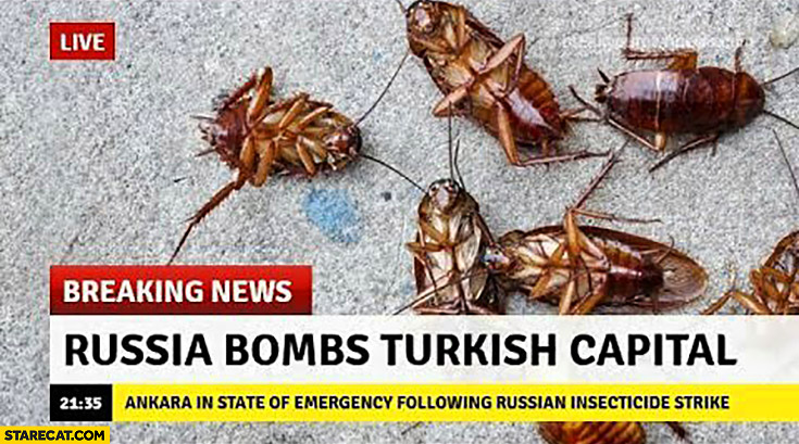 Breaking news Russia bombs Turkish capital cockroaches
