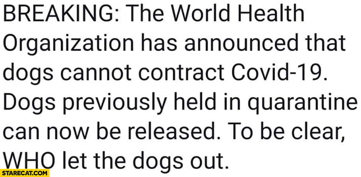 Breaking: World Health Organization announced dogs cannot contract Covid-19, to be clear: WHO let the dogs out