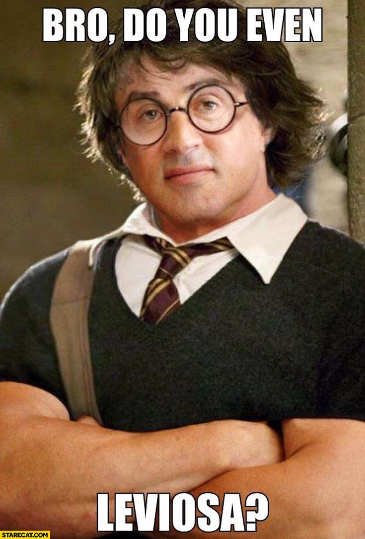 Bro do you even leviosa Sylvester Stallone Harry Potter