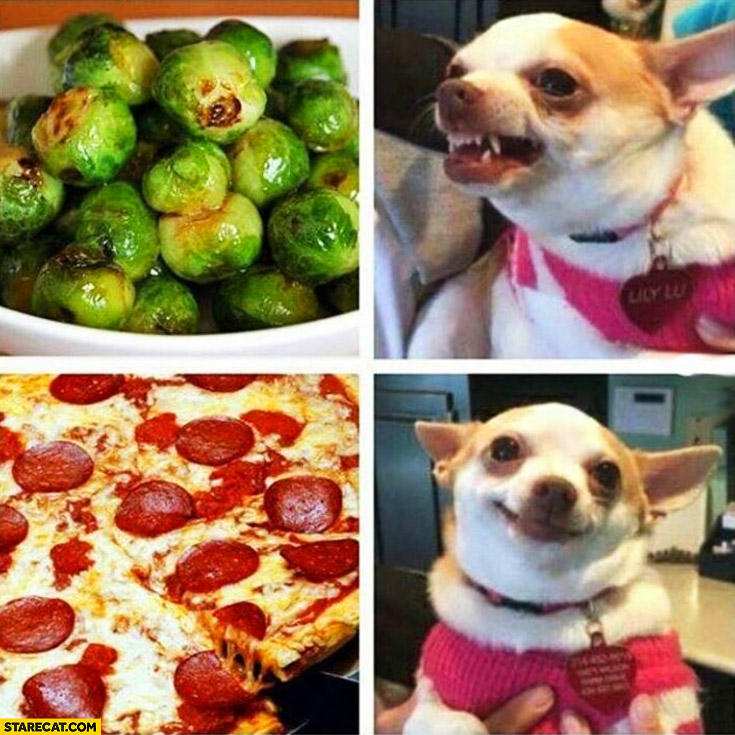 Brussels sprouts barking dog pizza happy dog