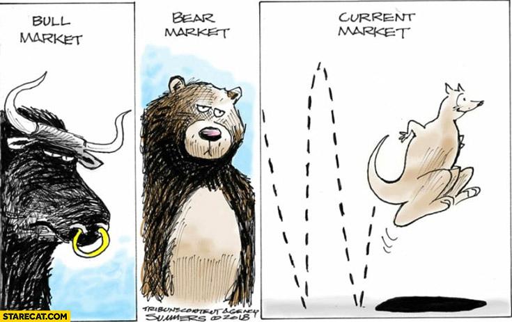 Bull market, bear market, current market kangaroo jumping comic