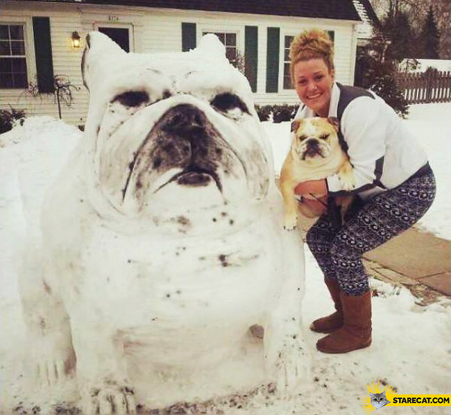 Bulldog snowman exactly the same