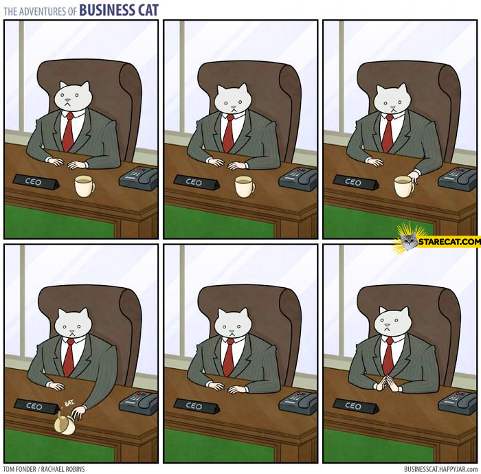 Business cat coffee