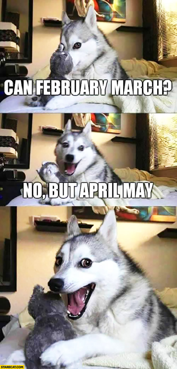 can february march no but april may funny happy dog meme